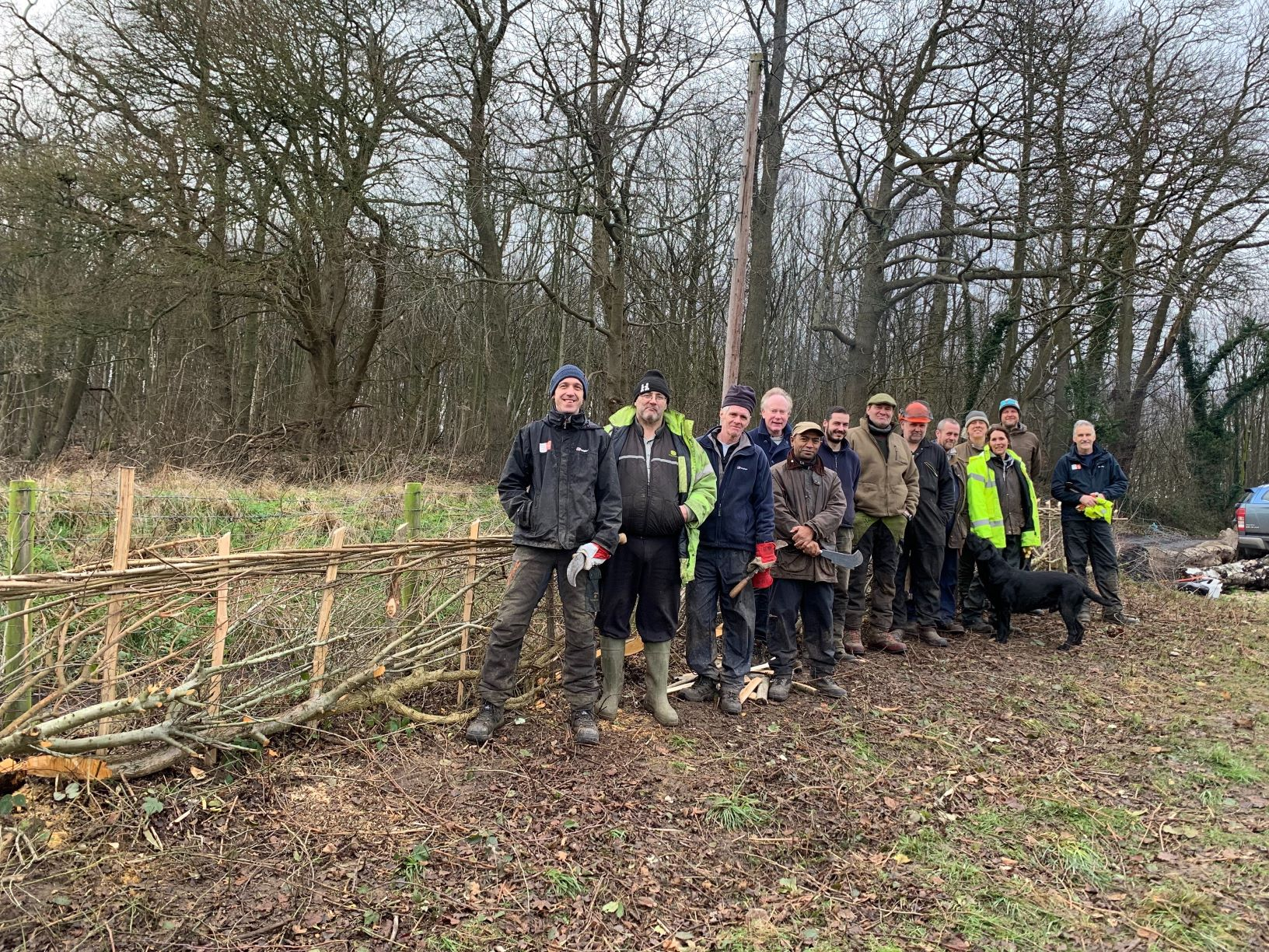 OCND Traineeship: Hedge Laying at Holly Hill